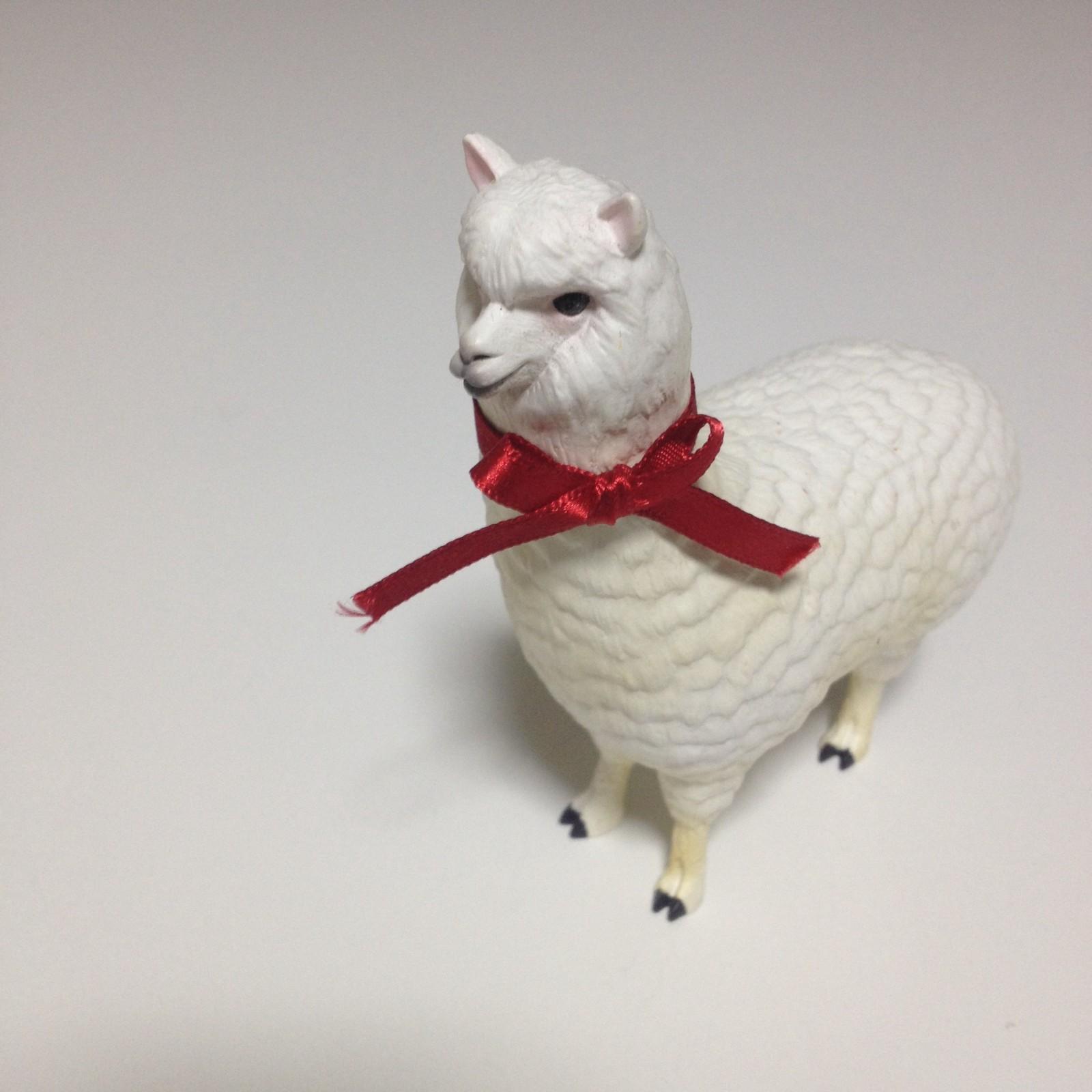 momoさんがアルパカの写真を投稿しました!